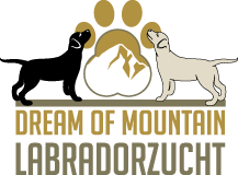 Labradorzucht Dream of Mountain Tirol Burgenland Logo